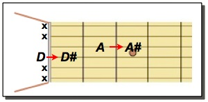Moving D Power Chord up to D SHARP Power Chord